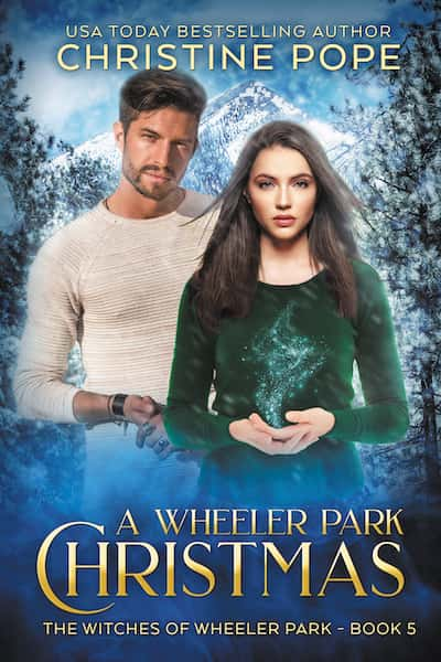 Book cover for A Wheeler Park Christmas by Author Christine Pope